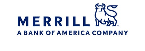 Merrilllynch 500