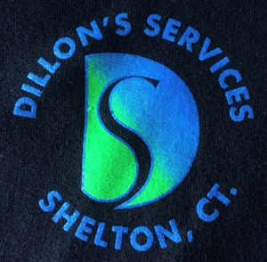 Dillons Services 300